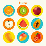Tropical Summer Fruit Vector Icon Set Royalty Free Stock Image