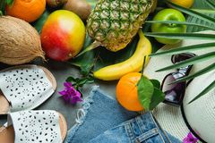 Tropical Summer Fruits Pineapple Mango Bananas Coconut on Large Palm Tree Leaf. Women Jeans Shorts Slippers Hat Sunglasses stock images