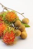 Tropical summer fruits, Rambutan and Longan, on white background Royalty Free Stock Photo