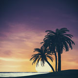 Tropical summer landscape Royalty Free Stock Image