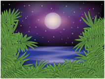 Tropical summer night card Royalty Free Stock Photos