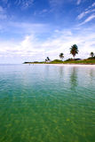 Tropical summer with palm trees. Summer at a tropical paradise in Florida Keys, USA with palm trees, blue sky, clouds and crystal clear water of Atlantic Ocean Royalty Free Stock Photo