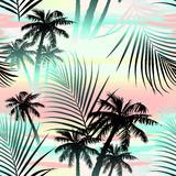 Tropical summer palms seamless pattern Royalty Free Stock Image