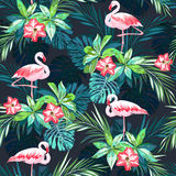 Tropical summer seamless pattern with flamingo birds and  flowers Royalty Free Stock Images