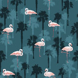 Tropical summer seamless pattern with flamingo birds Royalty Free Stock Image