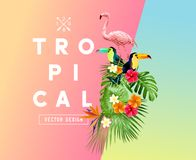 Tropical Summer Themed Illustration Royalty Free Stock Images