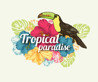 Tropical summer typographical background with hand Stock Image
