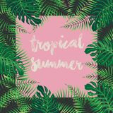 Tropical summer - vector background. With foliage and pink background Stock Image