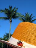 Tropical sun hat Royalty Free Stock Image
