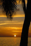 Tropical Sundown. Photgraphed in Holetown, Barbados stock images