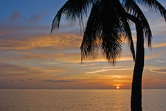 Tropical Sundown. Photgraphed in Holetown, Barbados royalty free stock images