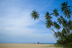 Tropical sunny beach Royalty Free Stock Photography