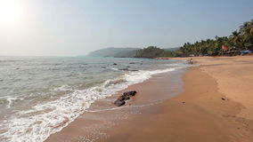 Tropical sunny beach. Tropical beach at sunny day in Goa, India stock footage