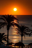 Tropical sunrise Royalty Free Stock Photography