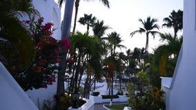 Tropical Sunrise. Sunrise at Las Hadas Resort in Manzanillo, Colima, Mexico stock video