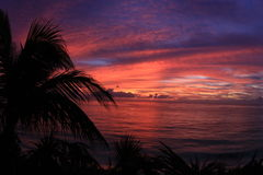 Tropical Sunrise. Pre Dawn Glow over the Altantic.  Abacos, Bahamas Stock Images