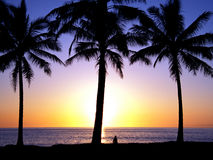 Tropical Sunset 1.5. A beautiful sunset in the tropics Royalty Free Stock Photography