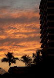 Tropical Sunset. A red tropical sunset as seen in Miami Royalty Free Stock Photography