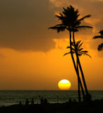 Tropical sunset. Over the ocean with palm trees and people silhouettes in the foreground stock images