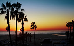 Tropical sunset. A beautiful sunset at the beach in santa monica california Royalty Free Stock Image