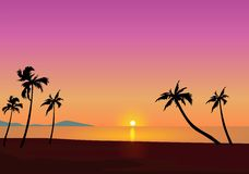 Tropical Sunset. Palm Trees and beach At Sunset Stock Photo
