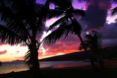 A Tropical sunset. A Tropical sunrise in Hawaii Royalty Free Stock Photography