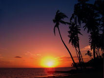 A Tropical sunset. A Tropical sunet on Hawaii Stock Image