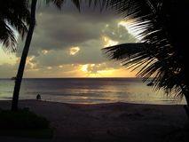 Tropical sunset. Setting sky and palm tree in the carribean Stock Photo