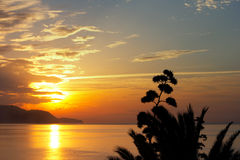 Tropical sunset Stock Images