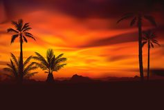 Tropical sunset 4 Stock Photography