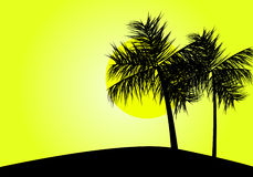 Tropical sunset. With palm trees silhouette, vector illustration royalty free illustration