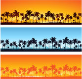 Tropical sunset background. Vector illustration Royalty Free Stock Images