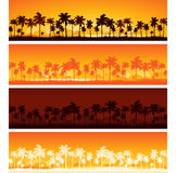 Tropical sunset background Royalty Free Stock Image