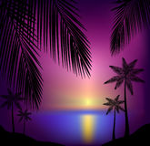 Tropical sunset beach. Vector Background illustration of beautiful tropical sunset beach Vector Illustration