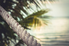 Tropical sunset beach with palm trees and blurred sea as summer vacation background in vintage style Royalty Free Stock Images