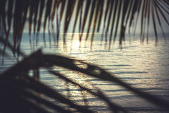 Tropical sunset beach with sea view from hut with hanging palm leaves and horizon over sea as summer vacation background in vintag Stock Image