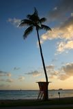 Tropical sunset beach in Waikiki, Hawaii. Photograph of a lifequard tower and palm tree on a calm evening by the ocean in paradise Stock Photography