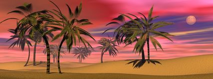 Tropical sunset - 3D render Royalty Free Stock Images