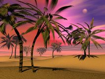 Tropical sunset - 3D render Stock Images