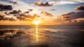 Tropical Sunset in the Florida Keys Sun Setting Over the Gulf of Royalty Free Stock Image