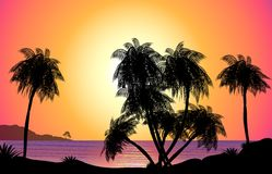 Tropical Sunset Illustration. An illustration of a tropical paradise sun set with a silhouette of palm trees and a sparkling ocean, perfect for use in just about vector illustration