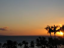 Tropical Sunset Landscape. Hawaii sunset behind palm trees over the ocean Stock Images