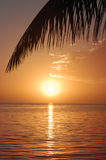 Tropical Sunset on the Ocean Stock Images