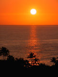 Tropical Sunset (Orange Skies). The sun sets over the Pacific Ocean, silhouetting palm trees in Hawaii Royalty Free Stock Image