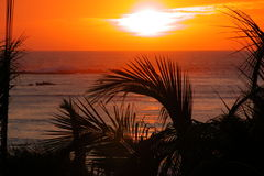 Tropical sunset over ocean. Mazatlan Mexico Stock Photos