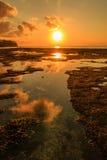 Tropical sunset over the ocean Stock Photos