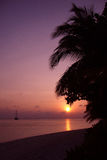 Tropical sunset. Sunset over Vilamendhoo, Ari Atoll, Maldives Royalty Free Stock Photo