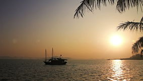 Tropical sunset. With palm tree and a boat in the sea stock video