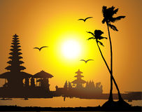 Tropical sunset, palm tree silhouette. Vector illustration Stock Photos