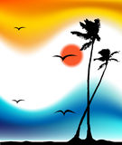 Tropical sunset, palm tree silhouette. Vector illustration Royalty Free Stock Image